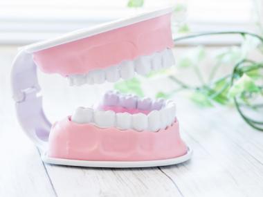 歯周病 イメージ写真